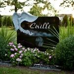 Example 12: Cirilli