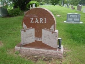 Example 15: Zari