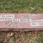 Example 22: Allwine